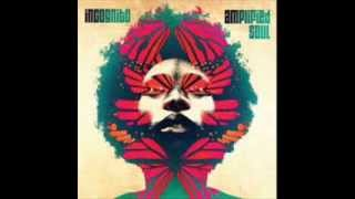 Incognito - Something
