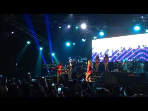 Don't Stop The Party (Live) - Pitbull