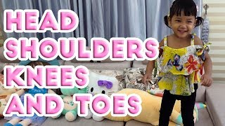 Head Shoulders Knees and Toes Kid Exercise Song-Along