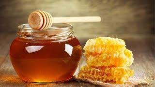 В Баку открылась выставка меда