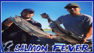 SALMON IN TEN MINUTES! | TROLLING SACRAMENTO RIVER | METRO AREA