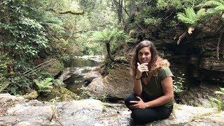 Zapętlaj Amy Wild Adventures: Tasmania I | Amy Wild