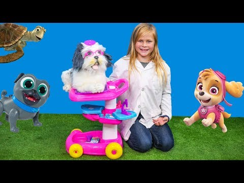 The Assistant Uses Barbie Pet Caret to Help Paw Patrol and Puppy Dog Pals