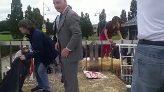 IFA beef protest