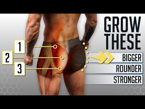 The 4 BEST Glute Exercises For A Nicer Butt (GYM OR HOME!) Ft. Bret Contreras