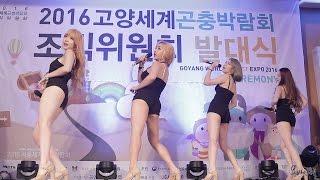 160909 판타스티(Fantastie) I Feel Good [2016고양곤충박람회 조직위원회 발대식 축하공연] 직캠 by 욘바인첼