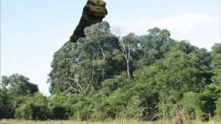 Godzilla and his Amazing Friends episode 5