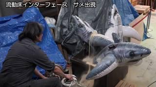流動床インターフェース 砂からサメ出現 Fluidized Bed Interface:Sharks suddenly come out from the sand