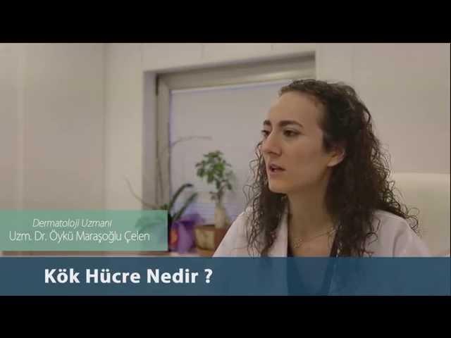 Dr.Öykü Maraşoğlu Çelen - Kök Hücre Nedir ?