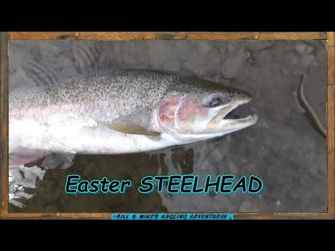 Easter Sunday STEELHEAD Fishing