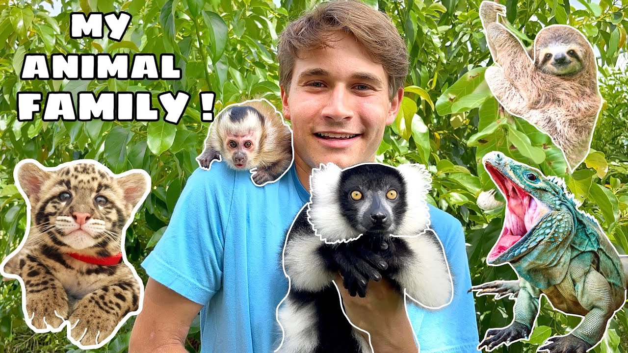 MEET ALL MY EXOTIC PETS ! FULL ZOO TOUR !