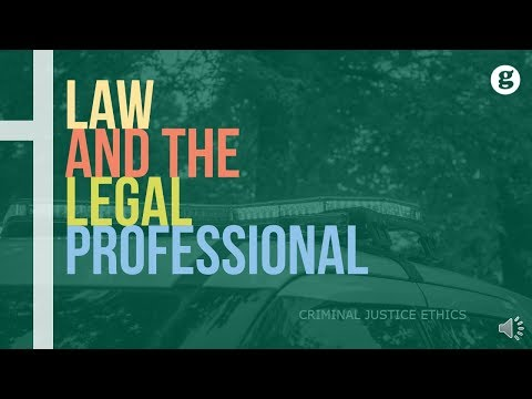 Law and the Legal Professional