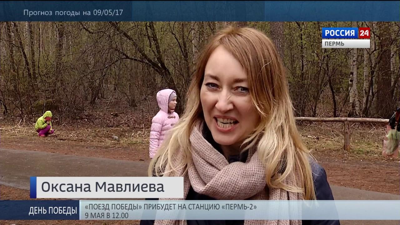 Купить елку в Москве. Как выбрать искуственную или живую. Дешево .