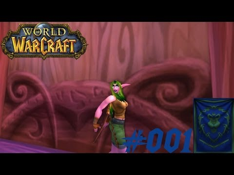 [LP] World of Warcraft - Allianz #001 ★Eine neue Heldin★