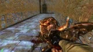 RtCW: Wolfenstein 3D - Secret Level (Extreme quality)