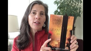 Shuly Talks about A Small Thing to Want (Press 53, 2020)