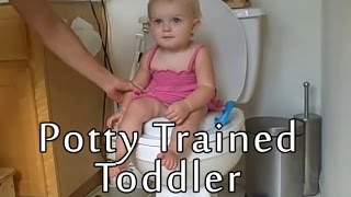 Potty Trained Toddler (3 Years Old) - Babys World