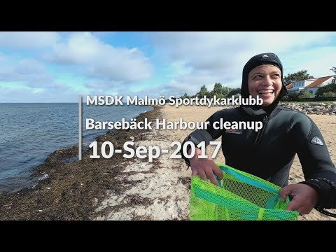 Barsebäck Harbour cleanup 10-Sep-17 (MSDK)