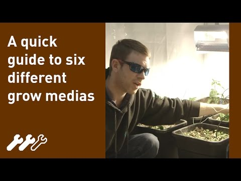 What growing media or medium should I use with hydroponics #9
