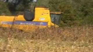 Corn Harvest 2009