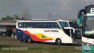 Kecelakaan yg melibatkan Bus Laju prima dan Haryanto ,,terjadi kare...