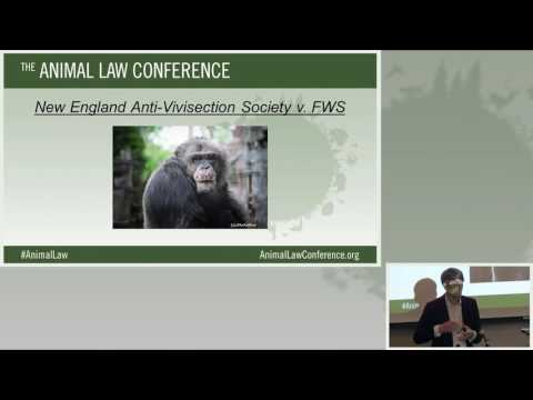 Animal Law Conference 2016   12   What's New in Litigation and Legislation 10 09 16