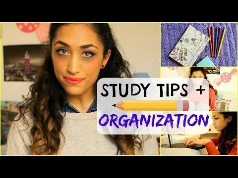 Come studiare bene e velocemente: consigli e organizzazione | PolvereDiTrucco