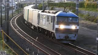 2019/12/05 JR貨物 朝の定番貨物列車4本 何とか撮れた鷲津東
