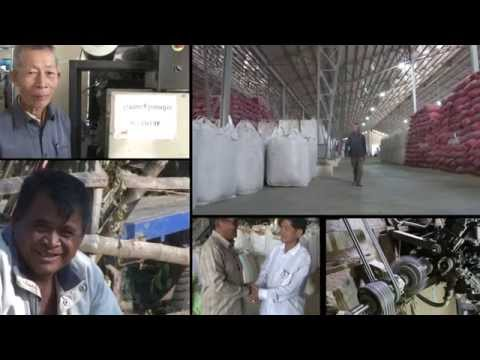 Rice husk gasification in Cambodia by Media Kampuchea