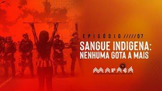 Episódio 7 - Sangue indígena: Nenhuma gota a mais │ Maracá