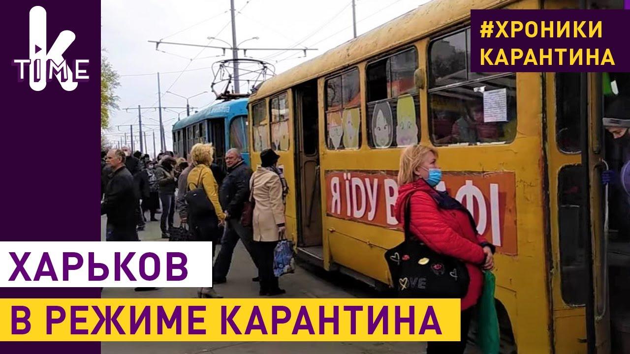 Карантин в Харькове: Барабашово, очереди и прогулки - #12 Хроники карантина