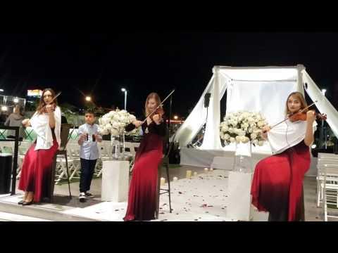 להקת כנריות ,להקת כנריות לחתונה,כנריות בחתונות,הופעה של כנריות,מופע כנריות לחתונה-0546211560