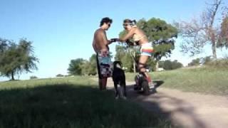x board wheelman parte 1