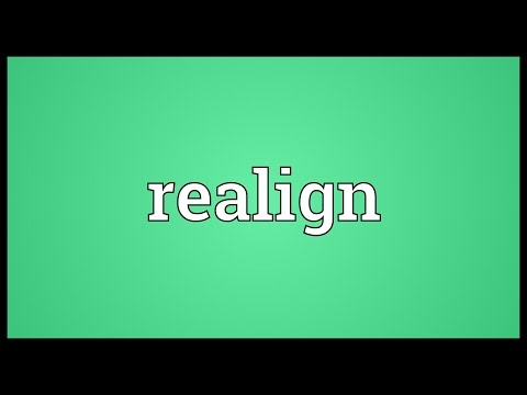 Realign Meaning