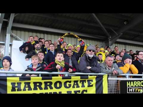 Harrogate Town Secure Play-Off's