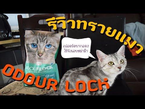 รีวิวทรายแมว Odour Lock (สูตรใหม่) ทรายแมวสัญชาติแคนาดา😲 || FANGFUU