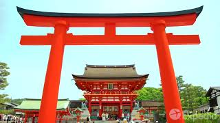 🇯🇵 Kyoto Travel Guide 🇯🇵   Travel Better In Japan!