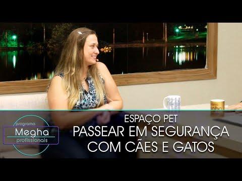 Como Passear Em Segurança Com Cães E Gatos | Dra. Luciana Fonseca | Pgm 651 | B3
