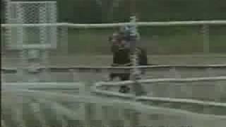 Clasico Jose Antonio Paez 1996