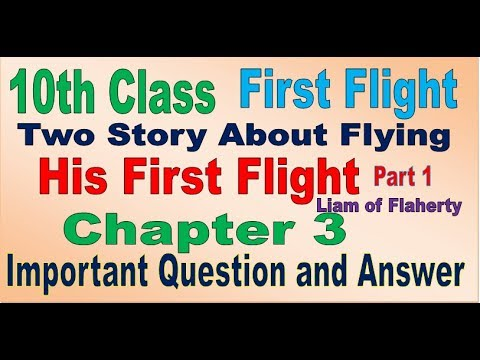 10th First flight Chapter 3 His first flight (Important question and  answer) in Hindi