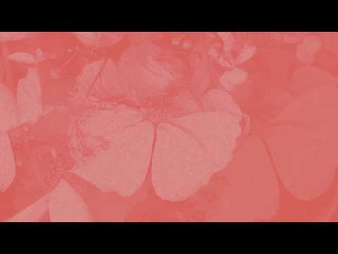 Aisha Badru - Vacancy [Audio] - Vacancy EP