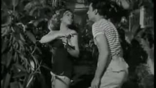 Subida al cielo - hallucinatory dream - Luis Buñuel