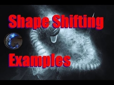 Shape Shifting Examples From The Carlos Castaneda Books
