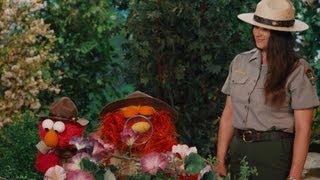 Sesame Street: Grand Canyon Seasons