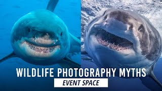Wildlife Photography: Dispelling Myths of Dangerous Animals | B&H Event Space