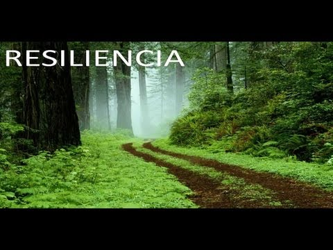 Definicion de la Resiliencia