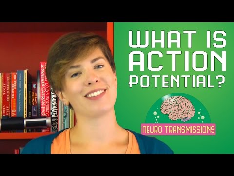 What is Action Potential?