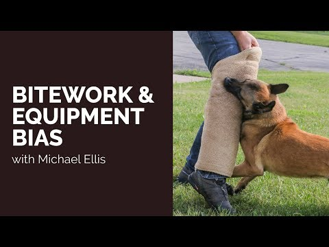 Bite Work & Equipment Bias - Michael Ellis