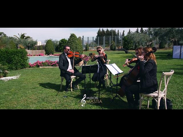 Can't Help Falling in Love | Musica Bodas Murcia | Musical Mastia