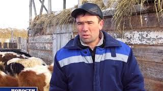 ЛПХ Хайретдиновы. Дмитриевка